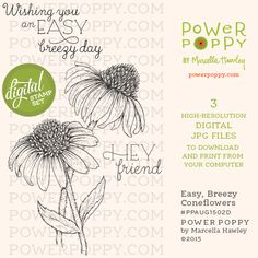 Easy Breezy Coneflowers Digital Stamp Set | Power Poppy by Marcella Hawley