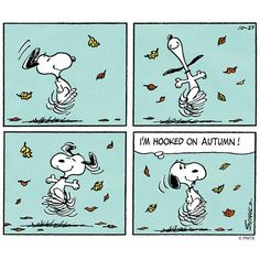 Image result for snoopy Fall