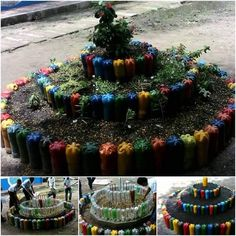 Extraordinary Way To Decorate Your Garden With Colored Old Bottles
