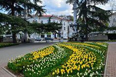 Севастополь утонувший в цветах « FotoRelax