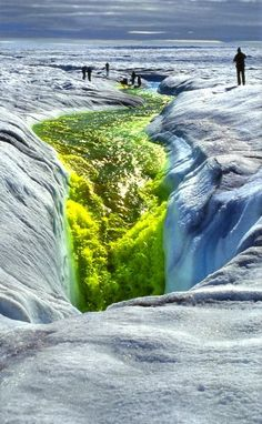 ♥ This is one way that glaciologists study glacial melting; they inject dye into the glacier.