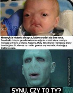 Read 2 from the story Czarny Humor Meme by (pietrucha) with reads. Harry Potter Marauders, Harry Potter Memes, Funny Photos, Funny Images, Funny Mems, Wtf Funny, Funny Comics, Best Memes, Hogwarts