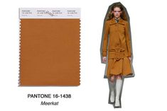 TREND H-W-2018_Farbtrend Goldbraun_ Meerkat Capsule Wardrobe, Autumn Fashion 2018, Color Trends, Pantone, Duster Coat, Spring Summer, Glamour, Beige, Style Inspiration