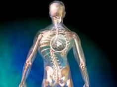 Scoliosis Animation - Causes, Symptoms, and Treatments of Scoliosis