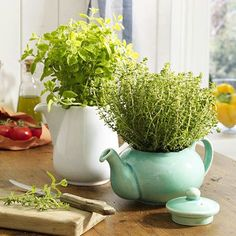 33 Favorite Diy Teapot Garden Decoration Ideas To Try Asap - If you want to spruce up your garden add some variety to those plain old garden pots then consider adding a garden theme to your outdoor decor. Herb Planters, Planter Pots, Hanging Planters, Herb Garden, Garden Pots, Succulents Garden, Teapot Crafts, Herbs Indoors, Trees To Plant