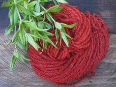 Items similar to Madder Seed, Rubia tinctorum, Rose madder, Red Dye Plant 2017 on Etsy Natural Dyeing, School Community, Dyes, Knitting Yarn, Gardens, Handmade Gifts, Plants, Etsy, Handcrafted Gifts