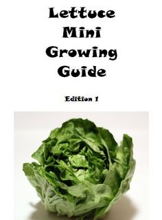 Lettuce Mini Growing Guide (Paperback – Edition 1) By Lazaros' Blank Books Learn all you need to know in order to grow lettuce in your garden. The book has plenty of space for note keep…