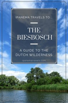 De Biesbosch is one of the 20 national parks in the Netherlands. It's the perfect destination for a weekend getaway. Find out in this travel guide everything you need to know about De Biesbosch: where to stay, how to get there, what to do. Europe Travel Guide, Travel Guides, Travel Plan, European Destination, European Travel, Travel Around The World, Around The Worlds, Amazing Destinations, Travel Destinations
