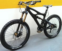Black and Gold Ibis. Drool time.
