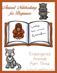 Animal Notebooking for Beginners – Endangered Animals, Pt. 3. Is your little one ready to learn about three more endangered animals in our early copywork and notebooking series? With this set, they can learn about the gray wolf, pygmy hippo, and Sumatran orangutan. With this fun 19-page free printable, little ones can discover fascinating animals, practice notebooking skills, and enjoy fun animals coloring pages.
