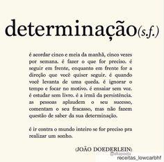 Significado da palavra Determinação