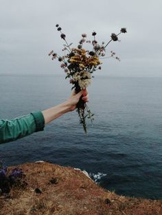 Stock photo of Holding Flowers Over the Sea by kevinruss Pale Tumblr, Belle Photo, Pretty Pictures, Blue Pictures, Life Is Beautiful, Wild Flowers, Ocean Flowers, Planting Flowers, Landscape