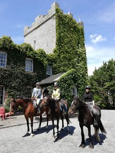 What a beautiful day we had yesterday, June Jasmine went on her first long trek and performed amazingly well. James met us at the Castle as she had. What A Beautiful Day, Sunday Funday, Horse Riding, Jasmine, Trek, To Go, Castle, Horses, Animals