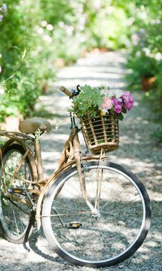 fietsen in de Provence