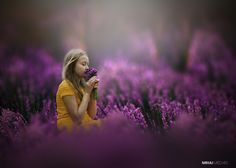 Fotografía Lavender moment por Mihai Medves  en 500px