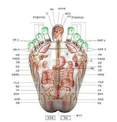 Rub out Migraine Headaches with 5 Chinese Acupressure Points (migraine relief) Massage Quotes, Acupressure Points, Health, Migraine Relief, Chinese, Med School, Yamamoto, Nail, Acupuncture