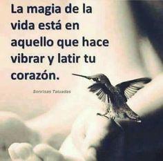 La.magia esta en todo aquello que hace vibrar lo mas profundo de tu corazon !