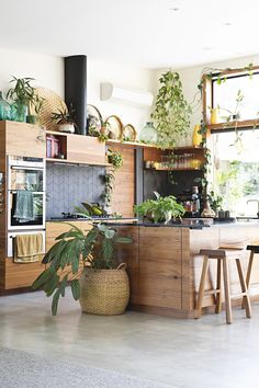Modern Plant Filled Handmade Furniture Australia Home Tour | Apartment Therapy