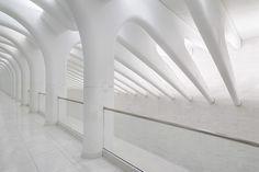santiago-calatrava-WTC-transportation-hub-new-york-designboom-02