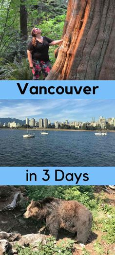 Planning on visiting Vancouver but short on time? Don't worry, here are my tips for what to do and see with 3 days in Vancouver. Vancouver British Columbia, Canada Vancouver, Visit Vancouver, Vancouver City, Vancouver Island, Granville Island Vancouver, Vancouver Skyline, Vancouver Vacation, Vancouver Travel