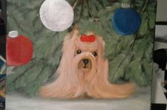 Yorkie Claus 11x14 on framed canvas