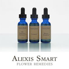 My Personal Assistant | Alexis Smart Flower Remedies   INDICATIONS:  Procrastination Fatigue Disinterest Reliance on caffeine for energy Dread of work