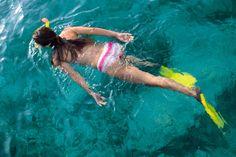 snorkel fish