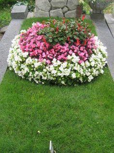 edle Grabbepflanzung Set Sommer Gras, Stepping Stones, Patio, Outdoor Decor, Plants, Image, Home Decor, Hacks, Google