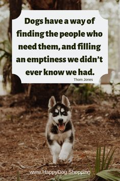 ❤️ Dog Quotes Love and Loyalty - HappyDog. Dog Quotes Love, Dog Quotes Funny, Funny Dogs, Pet Quotes, Dog Loyalty Quotes, Dog Sayings, Life Quotes, Friend Quotes, Dog Memes