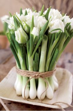 spring onions_roses