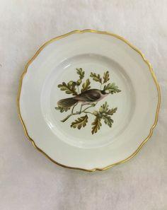 Spode Audubon Birds Dinner Plate  Canada Jay 3  w Gold Trim Bone China   eBay & Adams China Plate Birds Of America Series Ruffed Grouse ...