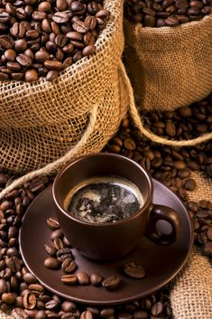 If you drink coffee and have ever stopped to look at the different types of gourmet coffee beans, you might want to actually give some a try next time you're Coffee Cafe, Coffee Drinks, Coffee Shop, Starbucks Coffee, Coffee Pods, Good Morning Coffee, Coffee Break, Coffe Recipes, Café Chocolate
