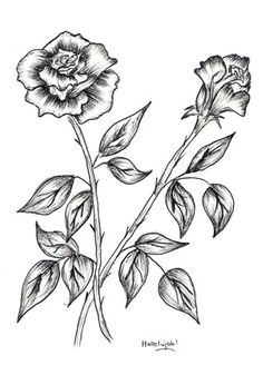 Learn to draw a rose in eight easy steps.