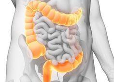 Millionen Menschen leiden unter Magen-Darm-Beschwerden, Hautkrankheiten, Kopfschmerzen, Müdigkeit und vielen weiteren Wehwehchen. Diese sind oft auf einen kranken Darm zurückzuführen. Es heißtauch…