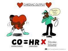 Cardiac Output | Nursing Mnemonics and Tips