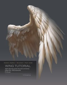 Wing Tutorial by yuchenghong on DeviantArt