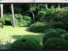 Mooi aangelegde landelijke achtertuin in Hoogvliet. | Tuininspiratie ...