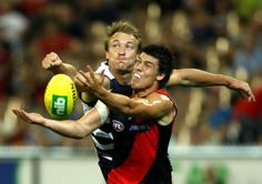Australian Football League Round 15 Geelong Cats vs Essendon at Etihad Stadium, On, Friday, June (AEST). It is Chappy and terrorist against the Geelong Cats. Australian Football League, Tv Channels, June, Friday, Cats, Gatos, Cat, Kitty, Kitty Cats