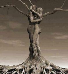 """"""" L'amour est juste à accepter, pas à comprendre . """" Damien Saez"""