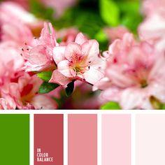 бордовый, весенне-зелёный цвет, весенние сочетание цветов, насыщенный зеленый, насыщенный розовый, нежный розовый, оттенки розового, персиково-розовый, светло-розовый, цвета весны 2017, яркий зеленый.