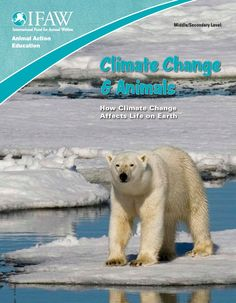 What Is Climate Change And A Worksheet Http Busyteacher