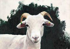 'A Wiltshire Horn' , Hannah Strudwick