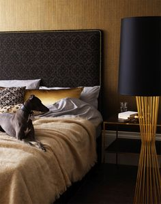 I love this mix of fold metallic bedstand, cushion, headboard piping and lamp against a muted brass wall. Has retro appeal and oodles of contemporary glamour.