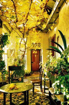 Gorgeous #indoor #garden.. Love it!  #entrance #outdoor