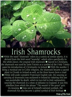 Irish Shamrocks. It should be noted that St. Patrick didn\'t technically introduce Ireland to Christianity, since Christianity was in Ireland for quite some time before his arrival. He is, however, credited with bringing Christianity to Ireland on the large scale that we see it now.