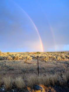ITAP of a double-rainbow via /r/itookapicture by KYLYKaHYT