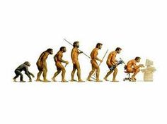 Media Ecology has impacted human evolution. The media has morphed us both mentally and physically overtime and. The media will continue to play a role in human evolution, and in years to come humans will change to fit the mold that media creates. Raising Godly Children, Homo, Human Evolution, Evolution Of Science, Digital Literacy, Good Posture, Chiropractic, Zoo Animals, Ancestry
