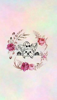 Fundos Cute Iphone Wallpaper Tumblr, Space Phone Wallpaper, Cute Wallpapers, Instagram Blog, Instagram Story, Dreamcatcher Wallpaper, Cute Dog Pictures, Pretty Pictures, Flower Backgrounds
