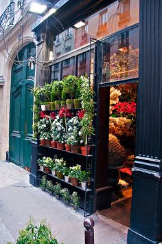 Saint Pères Fleurs, Flower shop, Paris France by LimeWave Photo, via Flickr