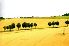 countryside of france - Google Search